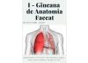 Educação Física promove 1ª Gincana de Anatomia